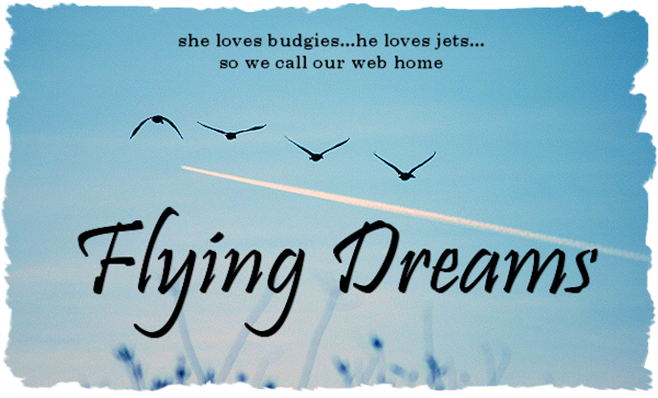 Flying Dreams Header